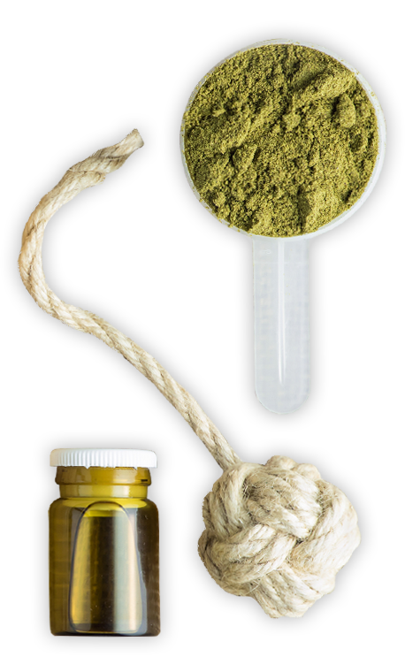 CBD Buyer's Guide – The Greeen House